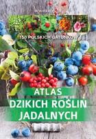 Atlas dzikich roślin jadalnych Monika Fijołek - Monika Fijołek
