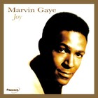 Joy - Marvin Gaye