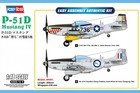 P-51D Mustang IV Fighter -