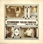 Penny Lane / Strawberry Fields Forever (LP) - The Beatles