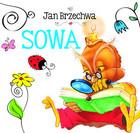 Sowa Jan Brzechwa - Jan Brzechwa