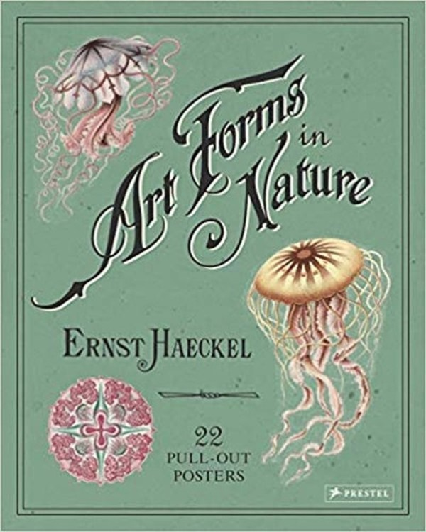 Art Forms in Nature Poster Book