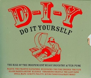 D-I-Y - Do It Yourself The Rise Of The Independient Music Industry After Punk