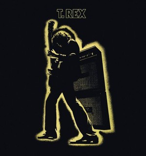 Electric Warrior (vinyl)