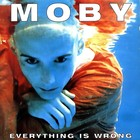 Everything Is Wrong (vinyl) - Moby