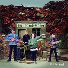 In The End (vinyl) - The Cranberries