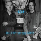 One Foot in the Grave (Expanded Edition) - Beck