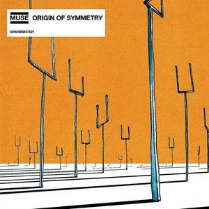 Origin Of Symmetry (vinyl)