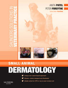 Saunders Solutions in Veterinary Practice: Small Animal Dermatology - Anita Patel, Fred Nind, Peter J. Forsythe