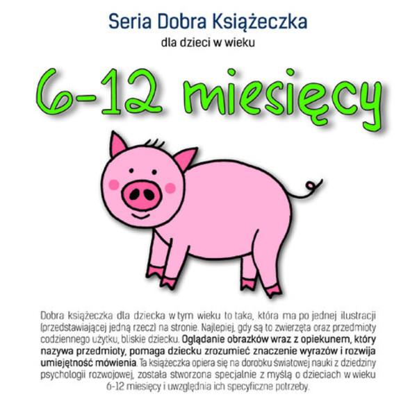 Seria Dobra Książeczka 6-12 Miesięcy / Agnieszka Starok 8