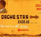Specialists In All Styles - Orchestra Baobab